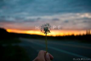 HOPE-copy-620x413