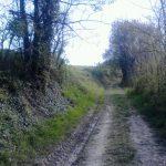sentieri